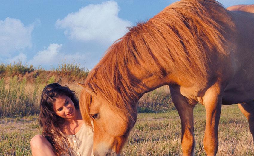 Pferdegespräch-Pferdekommunikation-Tierkommunikation-Pferdetelepathie